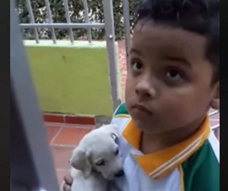 """""""Il pleurait dehors dans la rue"""" : on l'envoie à l'épicerie et il en revient avec un chiot dans les bras"""
