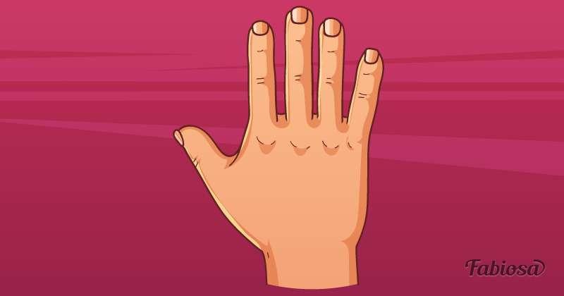Практичная или психическая рука? Что форма ладони и пальцев может рассказать о человеке