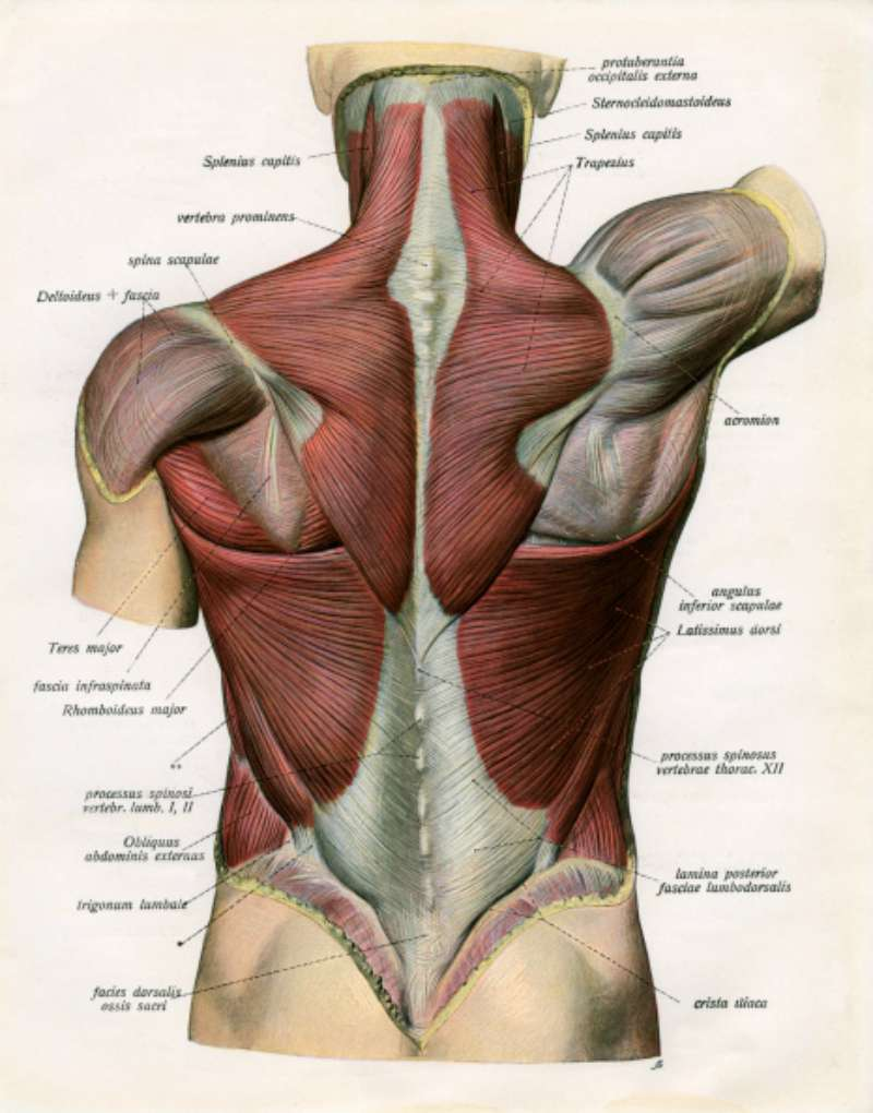 how to get rid of muscle tension dysphonia