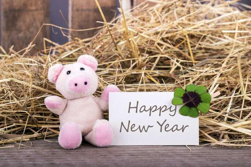 Новый год 2019: как встречать, что надеть и чего ждать от года Желтой Земляной СвиньиНовый год 2019: как встречать, что надеть и чего ждать от года Желтой Земляной Свиньиpig new year