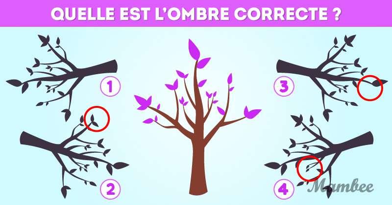 Une devinette par jour pour garder un esprit acéré : essayez de retrouver l'ombre de l'arbre !Une devinette par jour pour garder un esprit acéré : essayez de retrouver l'ombre de l'arbre !Une devinette par jour pour garder un esprit acéré : essayez de retrouver l'ombre de l'arbre !Une devinette par jour pour garder un esprit acéré : essayez de retrouver l'ombre de l'arbre !