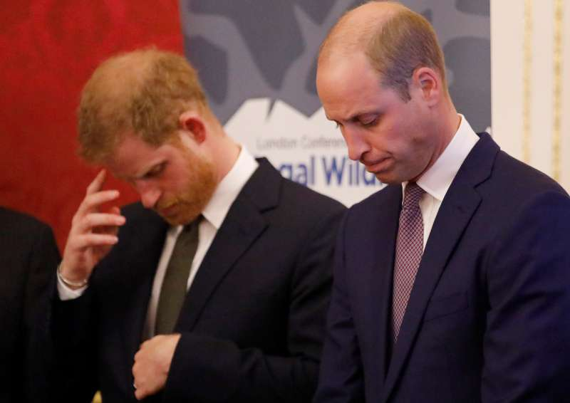 There's Still Rift Between Harry And William Even After The Cambridges Met Baby Archie, Royal Expert ClaimsThere's Still Rift Between Harry And William Even After The Cambridges Met Baby Archie, Royal Expert ClaimsThere's Still Rift Between Harry And William Even After The Cambridges Met Baby Archie, Royal Expert Claims