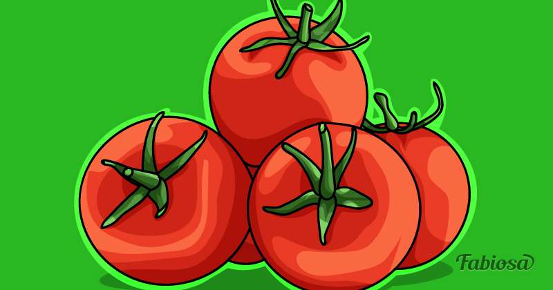 Полезные эффекты, которые подарит маска из обычных помидоровПолезные эффекты, которые подарит маска из обычных помидоровПолезные эффекты, которые подарит маска из обычных помидоров