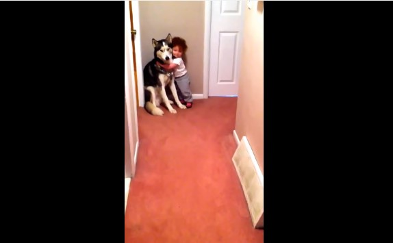 Wie entzückend: Baby überwindet ihre Angst vor dem Staubsauger, indem sie bei ihrem besten Freund Zuflucht findets