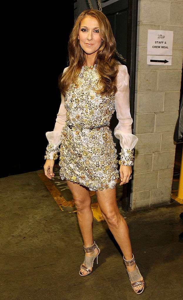 Certains fans ont reproché à Céline Dion d'être trop mince, mais que révèlent ses photos des années passées ?celine dion skinny look