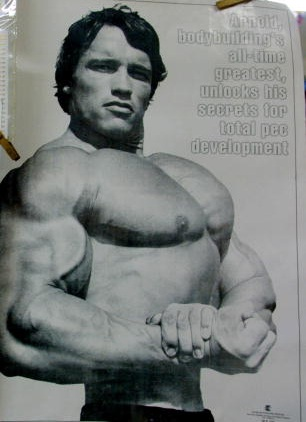 Like Father Like Son! Joseph Baena Successfully Recreates One Of His Father, Arnold Schwarzenegger's Iconic Poses Making His Dad ProudLike Father Like Son! Joseph Baena Successfully Recreates One Of His Father, Arnold Schwarzenegger's Iconic Poses Making His Dad Proud