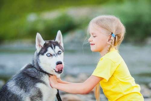 Wie entzückend: Baby überwindet ihre Angst vor dem Staubsauger, indem sie bei ihrem besten Freund Zuflucht findet