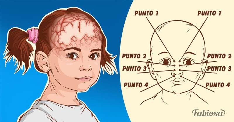 ¿Quieres que tu hijo crezca inteligente? Terapeutas recomiendan el masaje intelectual de Auglin