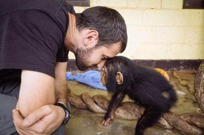 monkey primat