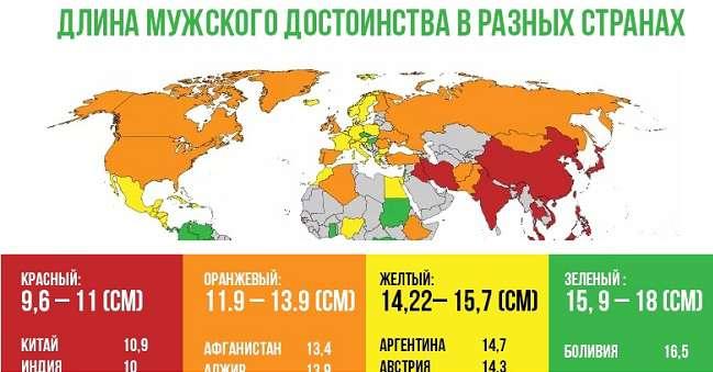 Размеры член по странам