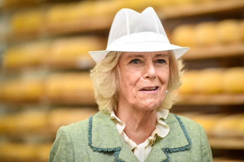 Royal Mad Hatter! Duchess Camilla Looks Striking In All-Green Outfit And Hilarious Hat At Engagement In BathRoyal Mad Hatter! Duchess Camilla Looks Striking In All-Green Outfit And Hilarious Hat At Engagement In BathRoyal Mad Hatter! Duchess Camilla Looks Striking In All-Green Outfit And Hilarious Hat At Engagement In Bath