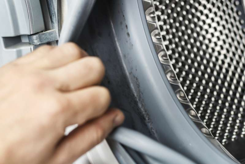 Eliminare la muffa dalla lavatrice: una semplice ricetta per mantenerla pulita per anniEliminare la muffa dalla lavatrice: una semplice ricetta per mantenerla pulita per anni