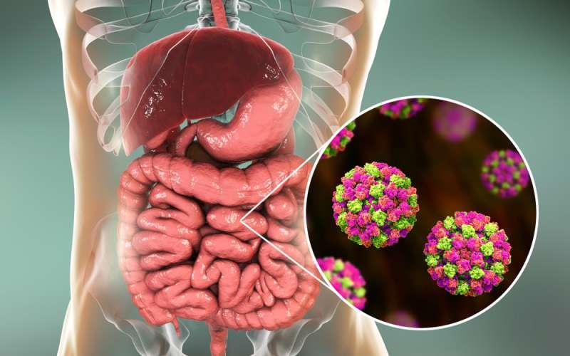 Attention épidémie ! Les populations de 6 régions touchées massivement par la gastro-entérite !