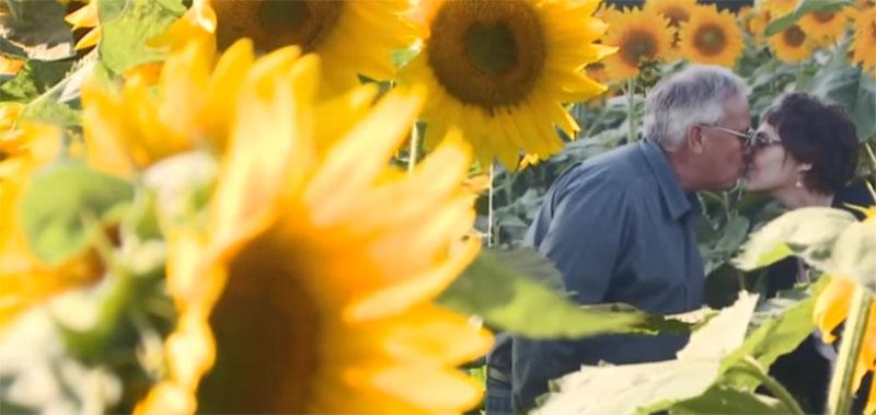 Babbette graines d'espoir : Le mari a planté plus de 160 ha de tournesols pour réaliser le rêve de sa femme décédée