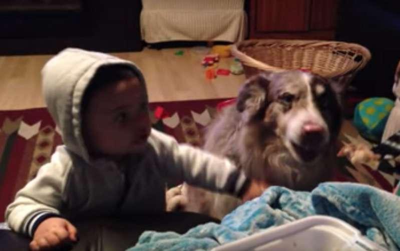 Sie Bringen Dem Baby Bei Mama Zu Sagen Aber Ihr Hund