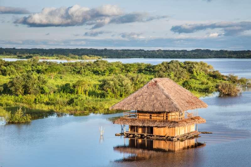 Une tribu de 500 personnes meurt lentement en Amazonie dans l'indifférence générale