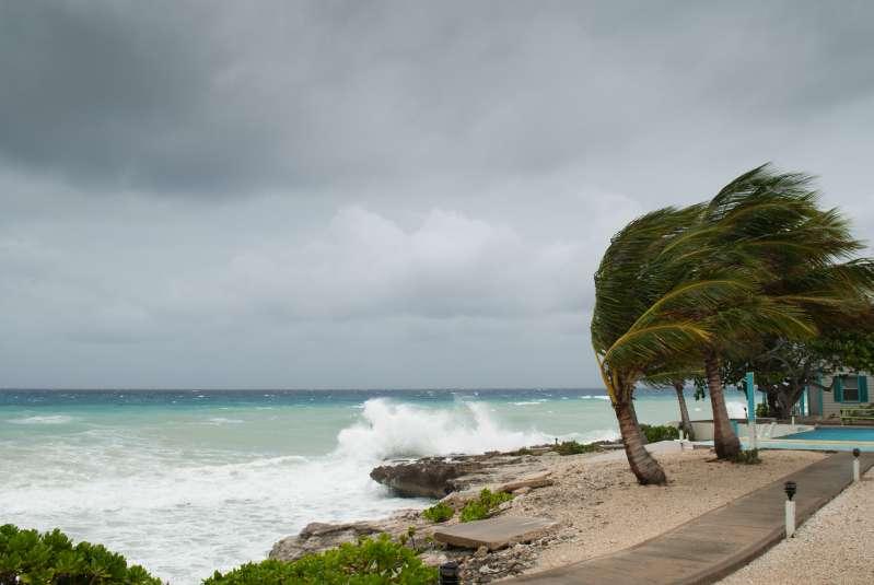 Alerta en el continente: inició la temporada de huracanes en el Pacífico para Centro y NorteaméricaAlerta en el continente: inició la temporada de huracanes en el Pacífico para Centro y NorteaméricaAlerta en el continente: inició la temporada de huracanes en el Pacífico para Centro y NorteaméricaAlerta en el continente: inició la temporada de huracanes en el Pacífico para Centro y Norteamérica