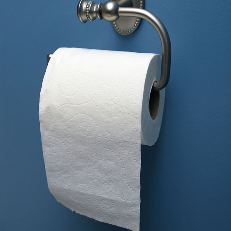 Fun Mock-Test: The Way You Hang The Toilet Paper Can Tell A Lot About Your Personalitysda