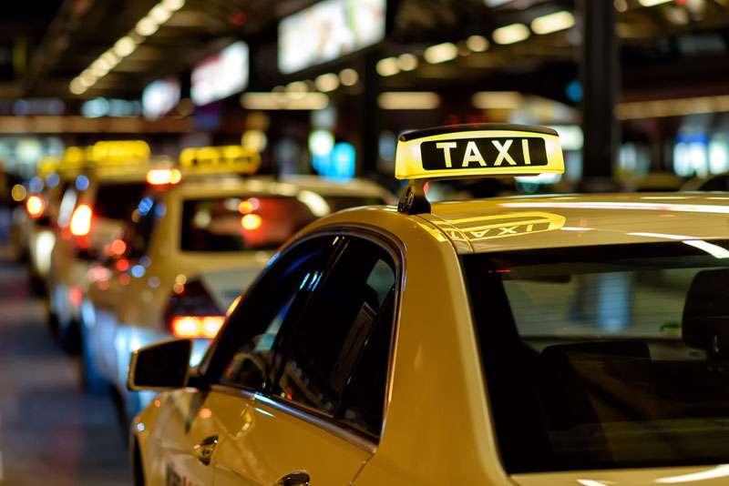 """Perrito corre desesperado tras un taxi en el que iba su """"familia"""" que acababa de abandonarloPerrito corre desesperado tras un taxi en el que iba su """"familia"""" que acababa de abandonarlo"""