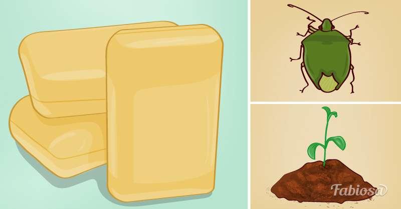 un pain de savon dans le jardin peut avoir de meilleurs. Black Bedroom Furniture Sets. Home Design Ideas