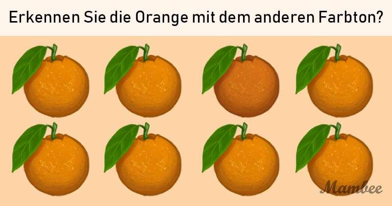 Farb-Test! Erkennen Sie die Orange mit der anderen Färbung?Farb-Test! Erkennen Sie die Orange mit der anderen Färbung?