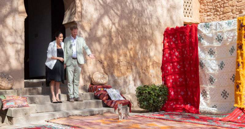 Stray Cat Photobombs Prince Harry And Meghan Markle's Picture During Their Visit To The Andalusian GardensStray Cat Photobombs Prince Harry And Meghan Markle's Picture During Their Visit To The Andalusian GardensStray Cat Photobombs Prince Harry And Meghan Markle's Picture During Their Visit To The Andalusian GardensStray Cat Photobombs Prince Harry And Meghan Markle's Picture During Their Visit To The Andalusian Gardens