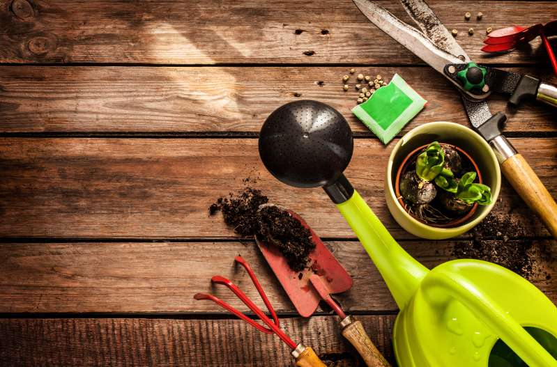 Gardening Is The New Form Of Exercising: Research Shows It Can Be As Healthy As Going To The GymGardening Is The New Form Of Exercising: Research Shows It Can Be As Healthy As Going To The GymGardening Is The New Form Of Exercising: Research Shows It Can Be As Healthy As Going To The GymGardening Is The New Form Of Exercising: Research Shows It Can Be As Healthy As Going To The GymGardening Is The New Form Of Exercising: Research Shows It Can Be As Healthy As Going To The Gym
