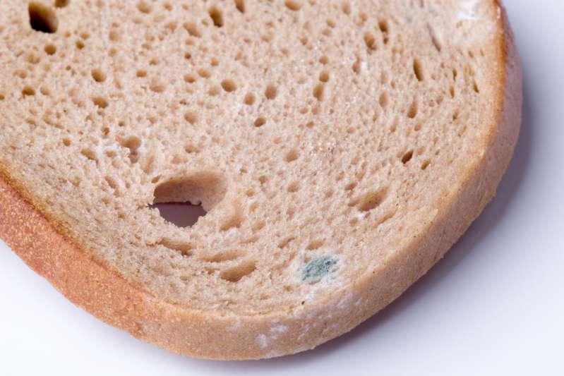 """Il pericolo sottovalutato di mangiare la parte """"pulita"""" del pane ammuffito"""