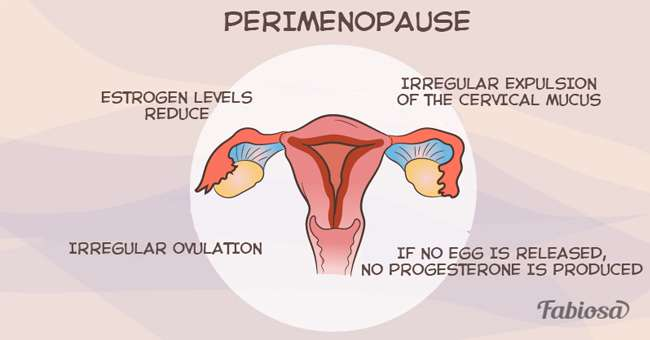 Dissertation about womans perspective on menopause experience