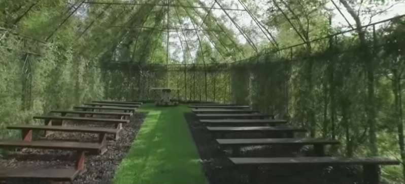 Enchanting! Man Spends 4 Years Building A Church Out Of Actual Living Trees, And It Is Breathtaking!