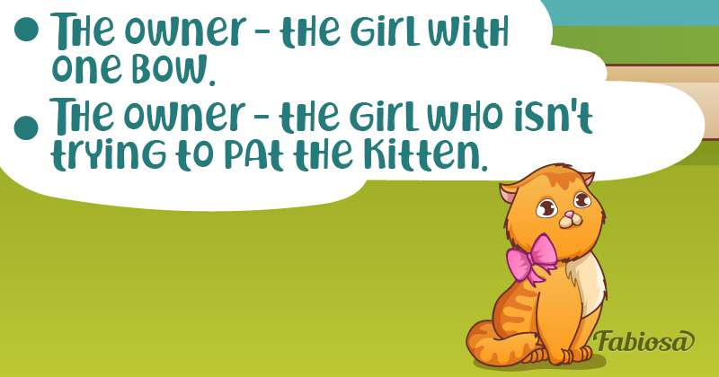 Logical Head-Scratcher: Who Is The Owner Of The Cute Kitten?
