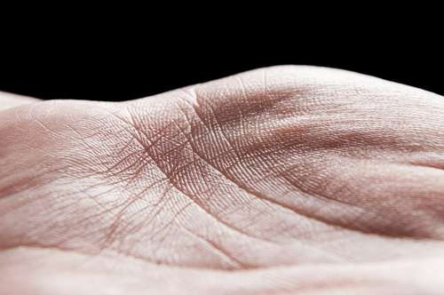 Ce que vous disent les lignes de vos mains : l'art de la chiromancie