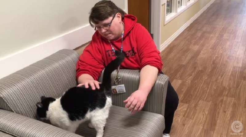Homeless Cat Wanders Into A Nursing Home And Ends Up Getting A JobHomeless Cat Wanders Into A Nursing Home And Ends Up Getting A Job