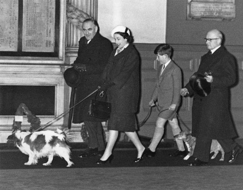 L'histoire de Lupo : Kate Middleton et le Prince William ont pris un chien pour une raison très touchante
