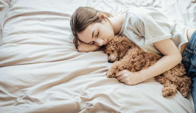 Un chien a été autorisé à aller à l'hôpital voir son propriétaire dans le coma et lui faire ses adieux