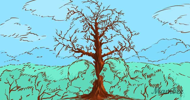 Des visages cachés dans les arbres : arrivez-vous à les distinguer ?