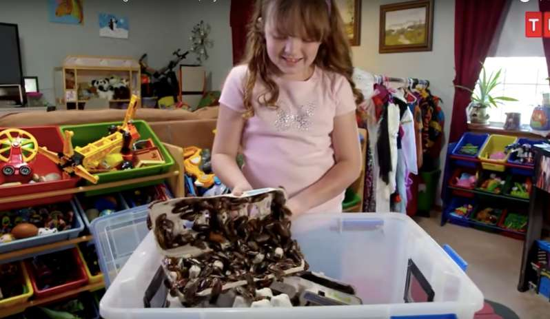 Such An Unusual Choice Of Pets: 9-Year-Old Girl Loves Cockroaches So Much She Let's Them  Crawl On Her Bed
