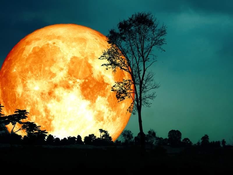 Lune des moissons : cette pleine lune du vendredi 13 pourrait avoir un impact sur chaque signe astrologique