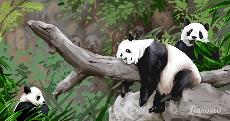 how many nice pandas hid in the picture?