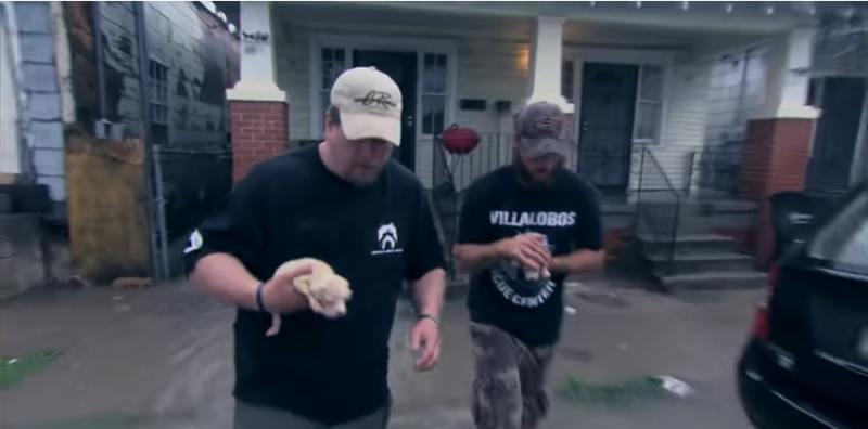 Mamãe cadela ferida coloca seu medo de lado e procura ajuda para seus filhotes, fazendo com que fossem resgatados