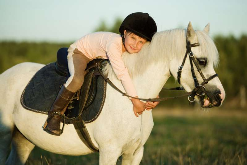 Little Girl Finds Out How To Rides Her Horse In An Interesting Manner And Wows The Internet