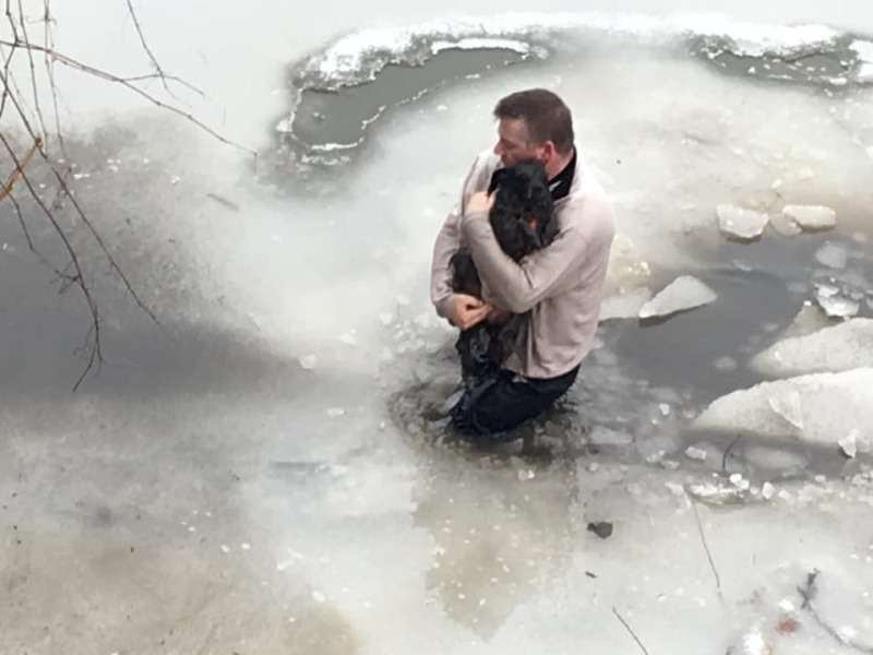 Noble Act: Selfless Man And His Dogs Save A Stranger's Dog By Unhesitantly Jumping Into The Icy Waters Of Tonawanda Creek