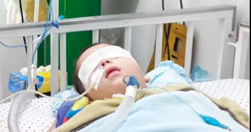 Jovem de apenas 10 anos organiza campanha para ajudar a família de bebê em estado vegetativo