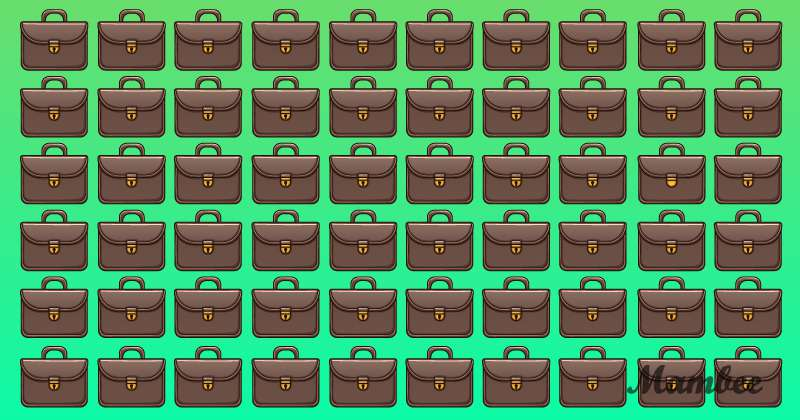 One Briefcase Doesn't Belong In The Bunch. How Quickly Can You Point Out The Odd One?