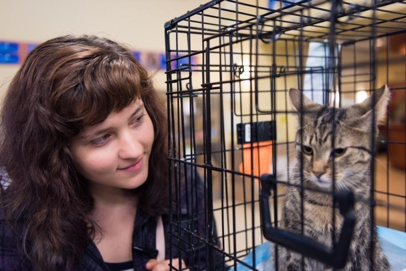 Pourquoi ne pas adopter un animal de compagnie handicapé ? La chatte Sirène nous prouve qu'ils méritent notre amour