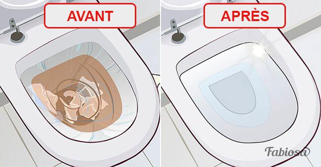 voici 4 simples astuces pour rem dier efficacement des toilettes bouch es sur fabiosa. Black Bedroom Furniture Sets. Home Design Ideas