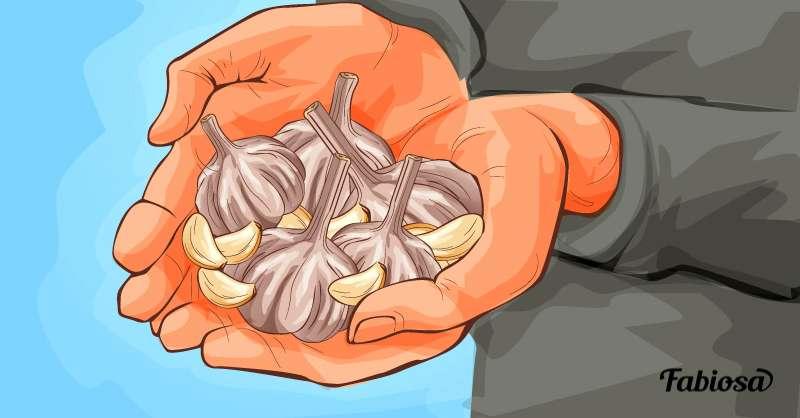 L'aglio è germogliato? Non buttatelo, è più utile di quanto pensiate!
