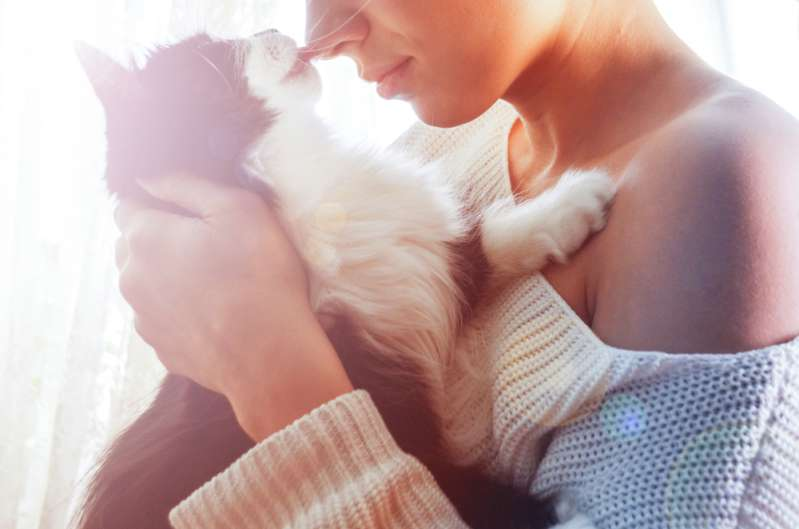 4 Reasons Why Cats Love To Sleep Next To Their Owners4 Reasons Why Cats Love To Sleep Next To Their Owners4 Reasons Why Cats Love To Sleep Next To Their Owners4 Reasons Why Cats Love To Sleep Next To Their Owners4 Reasons Why Cats Love To Sleep Next To Their Owners