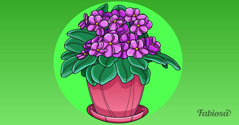 Орхидея или кактус? Комнатное растение-талисман для каждого знака зодиакаОрхидея или кактус? Комнатное растение-талисман для каждого знака зодиакаОрхидея или кактус? Комнатное растение-талисман для каждого знака зодиакаОрхидея или кактус? Комнатное растение-талисман для каждого знака зодиакаОрхидея или кактус? Комнатное растение-талисман для каждого знака зодиакаОрхидея или кактус? Комнатное растение-талисман для каждого знака зодиакаОрхидея или кактус? Комнатное растение-талисман для каждого знака зодиакаhouseplants for zodiac signs