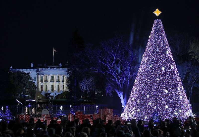 Christmas Tree Lighting Ceremony
